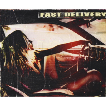 Fast Delivery von Jörg Döring