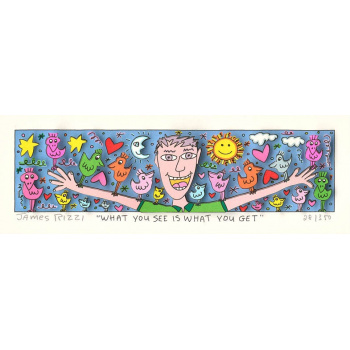 What you see is what you get von James Rizzi