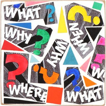 What When Why Where by Kati Elm